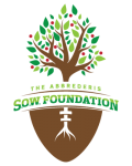 Logo-About-Page-Strtch